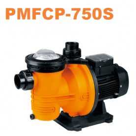 Elettropompa per piscina GLONG PMFCP-750S a velocità variabile .